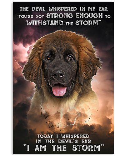 Leonberger - Storm
