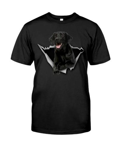 Labrador-Black - Torn