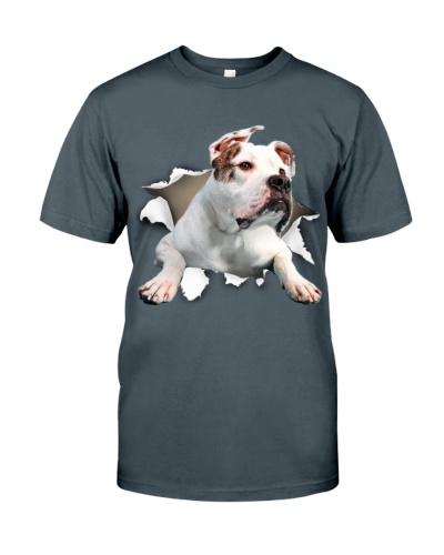 American Bulldog - Torn02