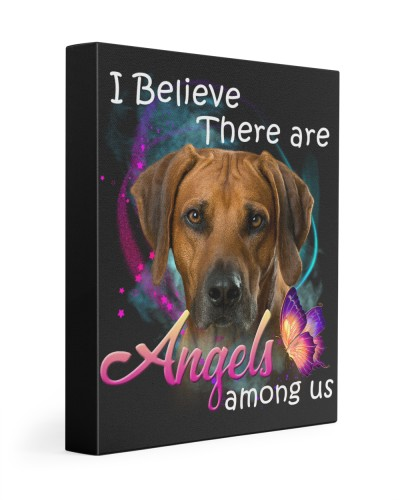 Rhodesian Ridgeback-03-Canvas Angels