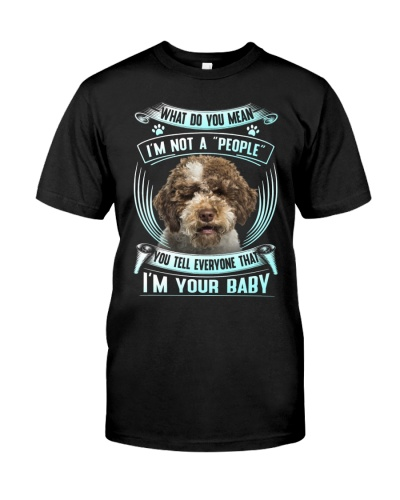 Lagotto Romagnolo-Your Baby
