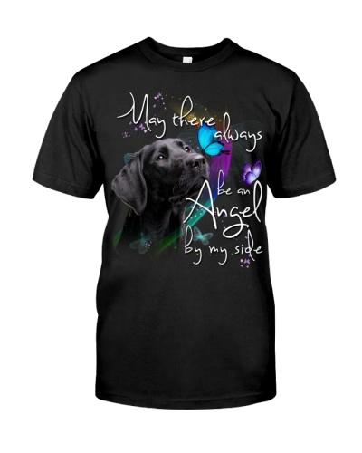 Labrador-02-An Angel