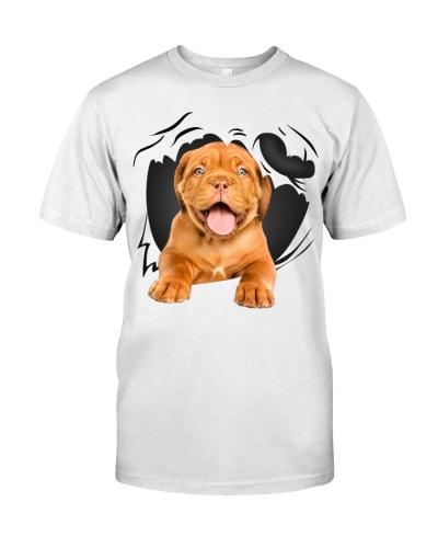 Dogue De Bordeaux-Torn07