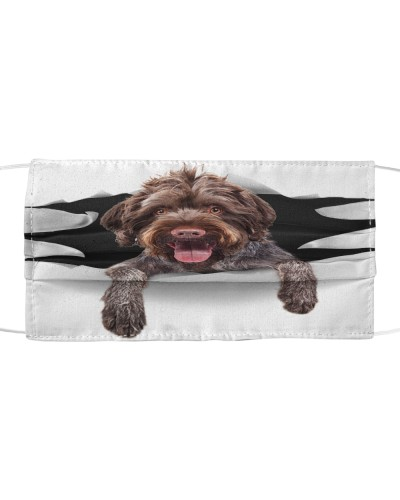 German Wirehaired Pointer-Face Mask-Torn03