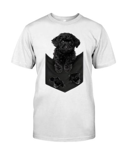 Black Toy Poodle - Pocket-Mid