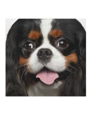 Cavalier King Charles Spaniel-Face Mask Cloth face mask aos-face-mask-coverlet-lifestyle-front-02
