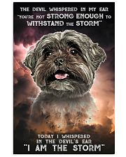 Shih Tzu - Storm 24x36 Poster front