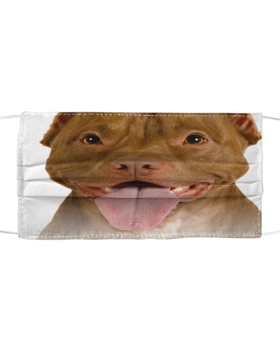 American Pit Bull Terrier-Face Mask