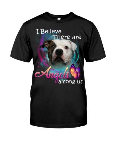 American Bulldog-03-Angels Among Us
