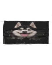 Husky-Hole Crack Cloth face mask front