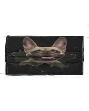 French Bulldog-03-Hole Crack Cloth face mask front