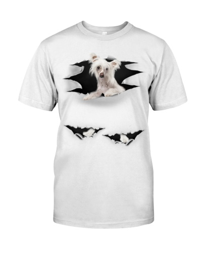 Chinese Crested - Torn03