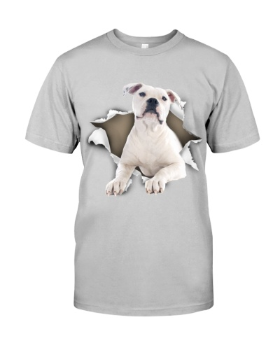 American Bulldog-03 - Torn02