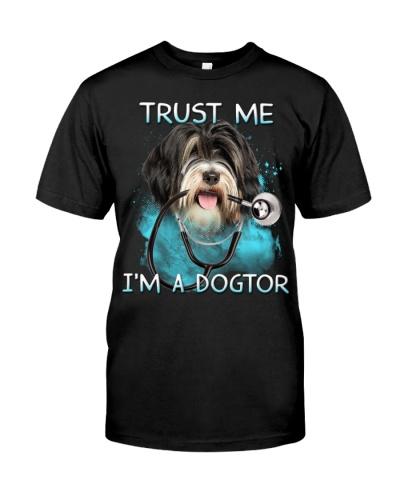 Tibetan Terrier-Dogtor