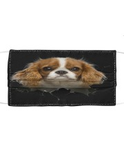 Cavalier King Charles Spaniel-02-Hole Crack Cloth face mask front