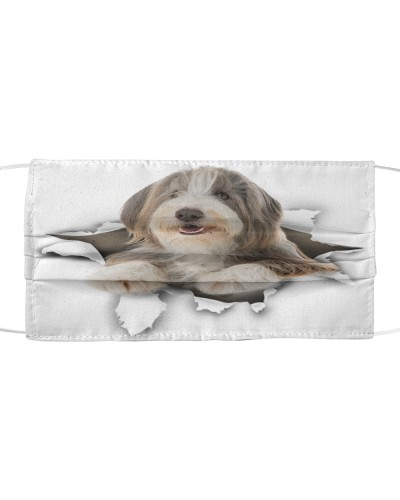 Bearded Collie-Face Mask-Torn02