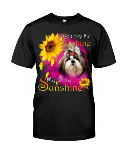 Shih Tzu-Face-My Sunshine