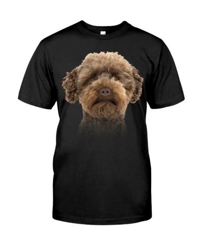 Australian Labradoodle-Dog Face