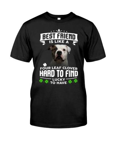 American Bulldog-Best Friend