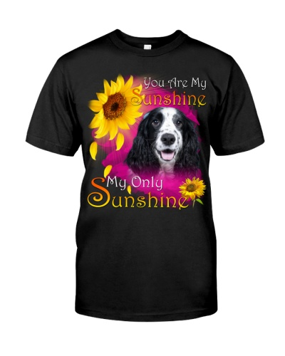 English Cocker Spaniel-Face-My Sunshine