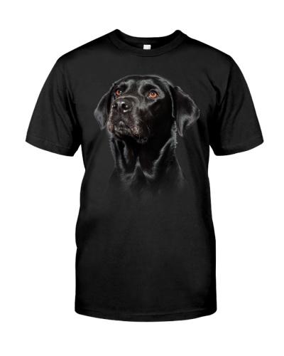 Labrador-Black02 - Only Face