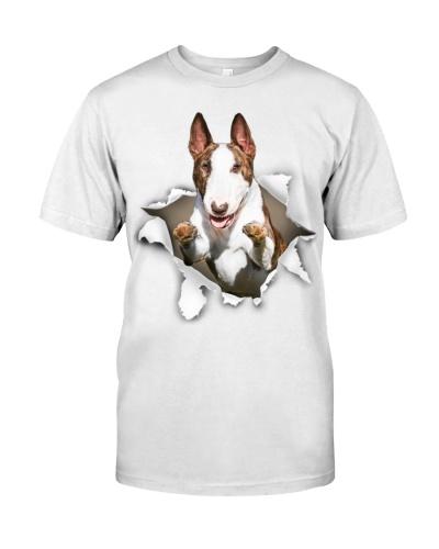 Bull Terrier - Torn02