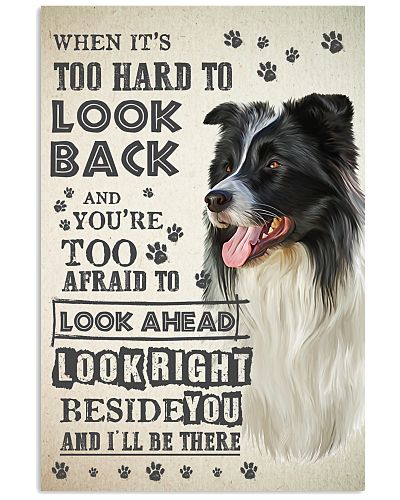 Border Collie - Look Back