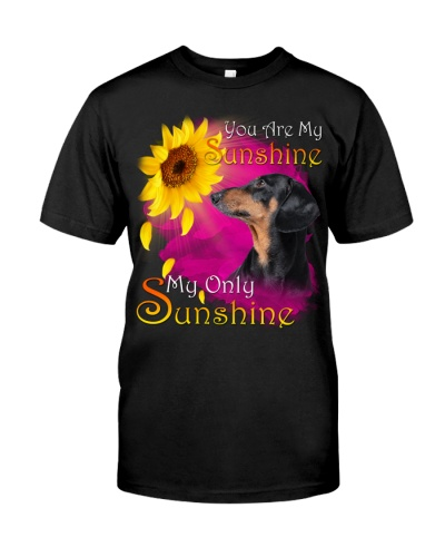 Dachshund-My Sunshine
