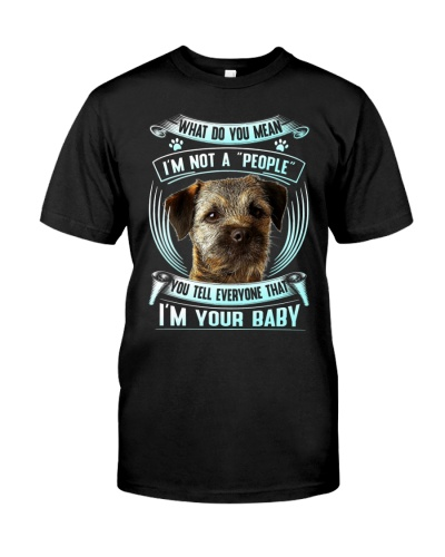 Border Terrier-Your Baby