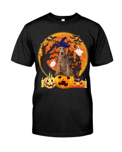 Irish Terrier-Halloween