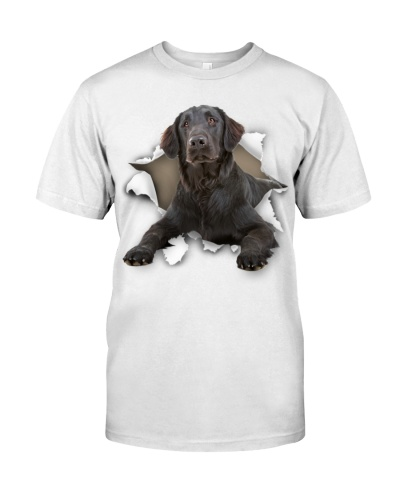 Flat Coated Retriever - Torn02