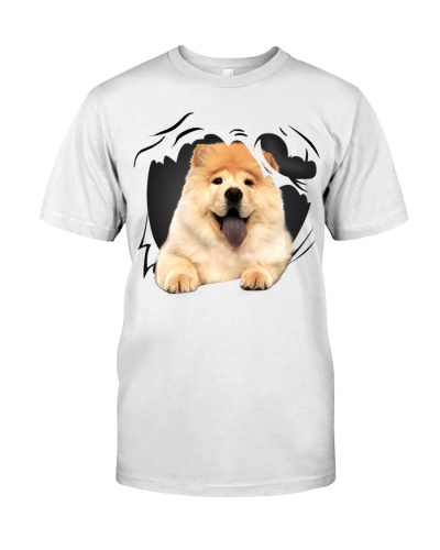 Chow Chow-Torn07