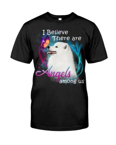 Samoyed-Angels Among Us