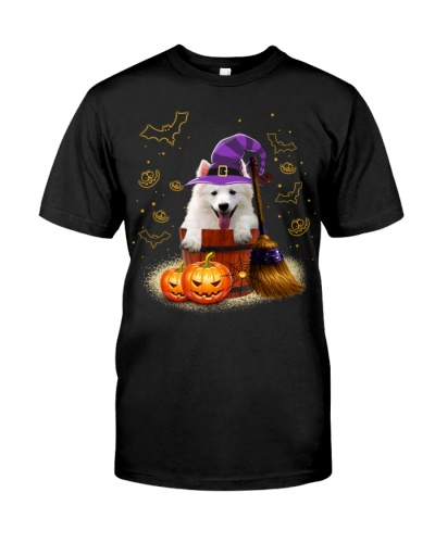 American Eskimo-Halloween-02