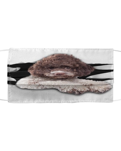 Lagotto Romagnolo-02-Face Mask-Torn03