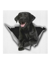Labrador-Black-Face Mask-Torn Cloth face mask aos-face-mask-coverlet-lifestyle-front-02