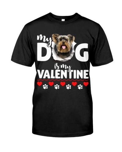 Yorkshire Terrier-My Valentine