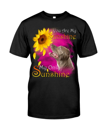 Pitbull-My Sunshine