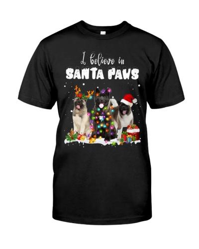 Akita-Santa Paws