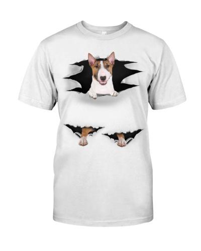Bull Terrier - Torn03