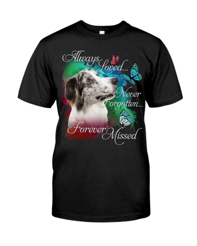 Border Collie-Forever Missed