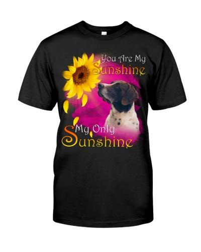 German Shorthaired Pointer-02-My Sunshine