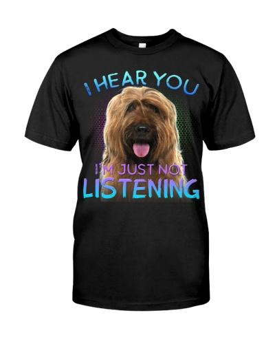 Briard-I Hear You