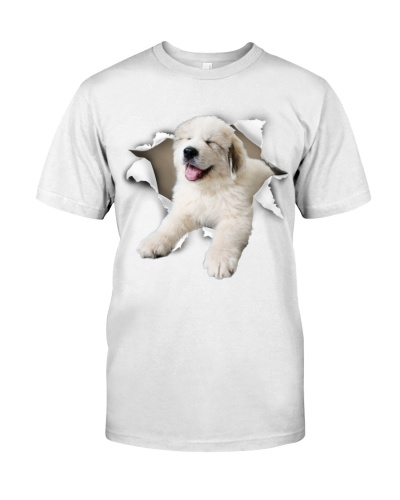 Great Pyrenees - Torn02