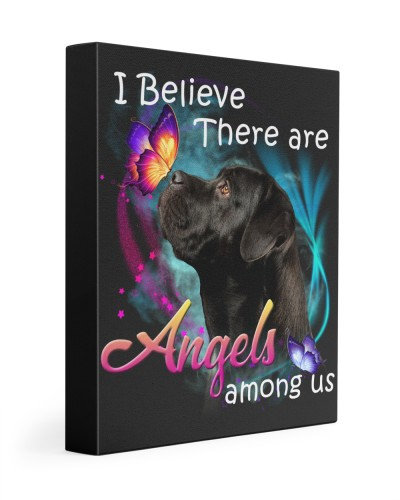 Cane Corso-02-Canvas Angels