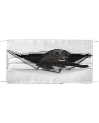 Flat Coated Retriever-02-Face Mask-Torn