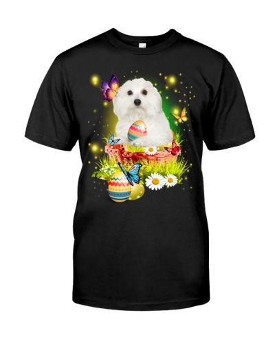 Coton De Tulear-Easter