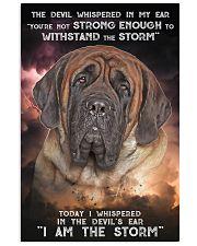 English Mastiff - Storm 24x36 Poster front