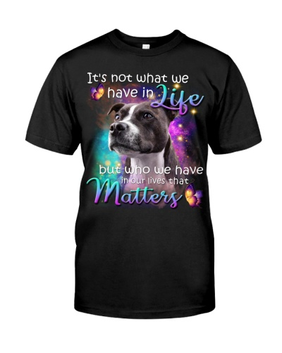 Staffordshire Bull Terrier-02-That Matters