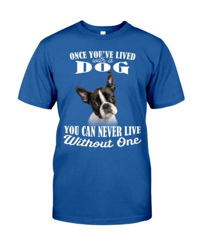 Boston Terrier-My Life